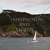View in Bay of Islands, New Zealand.