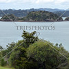 View of the bay from Waitangi Treaty Grounds in Bay of Islands, New Zealand.