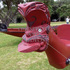 Maori War Canoe carved head symbol.
