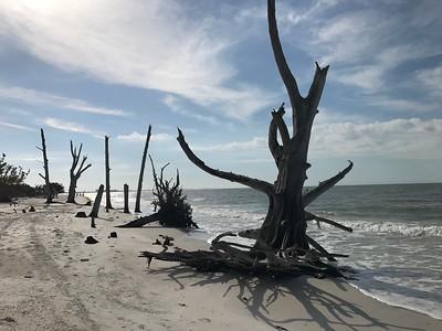 Beach-Loverskey