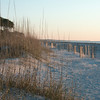 Morning Walk at Palmetto Dunes, Hilton Head Island, SC