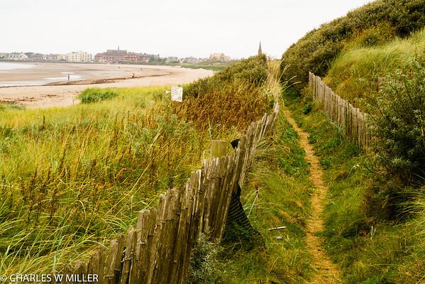 Walkway on the beach