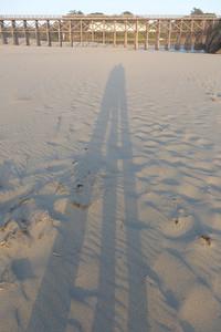 Long-legged shadow