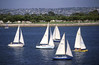 Sailboats on Mission Bay in San Diego on a bright sunny day.