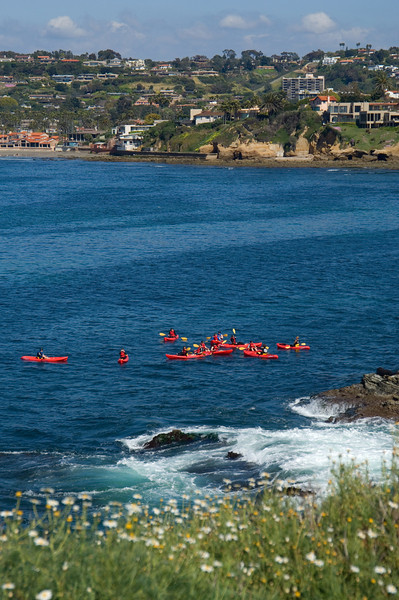 Kayaking at La Jolla Cove is a great way to spend an afternoon!