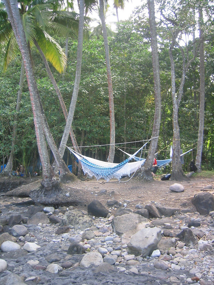 Nice place for hammocks on Anse Couleuvre.