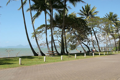The beautiful Palm Cove, north of Cairns.