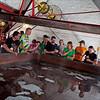 "De Dolle Brouwers, Esen, Belgium - Many Belgian breweries still cool their wort (pre-fermented beer) in open copper vessels called ""Coolships""."