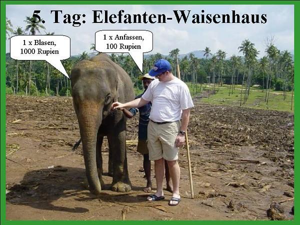 5. Tag: Elefanten Waisenhaus