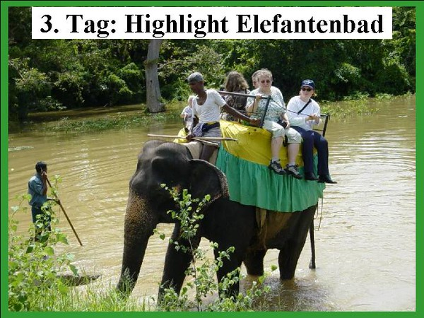 3. Tag: Gighlight Elefantenbad