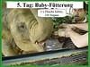 5. Tag: Baby-Fütterung