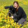 Photographing in a fresh poppy field, lower Sierra Nevada foothills. 3/7/09