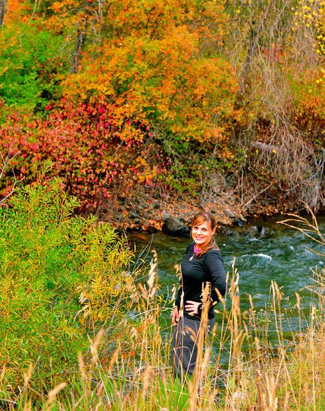Fall color. Logan Canon, Utah.  Oct 2011