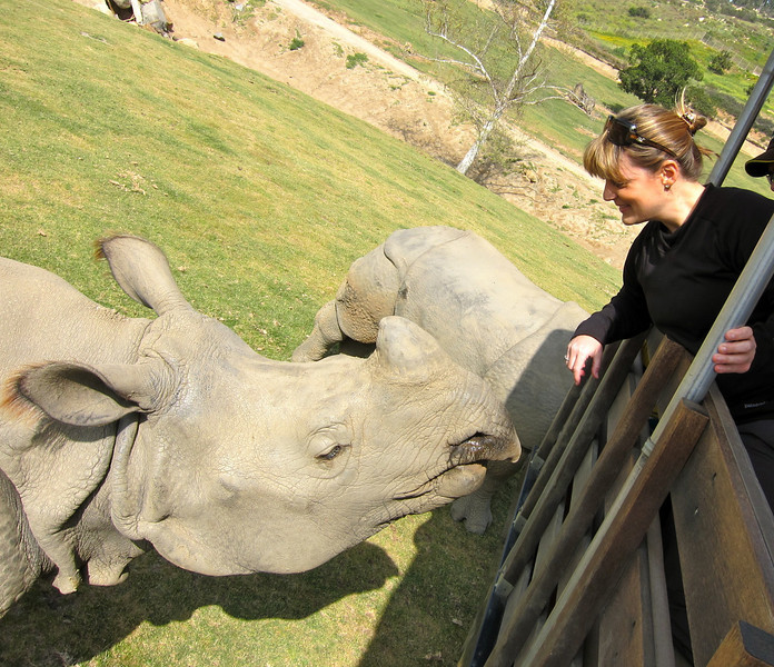 Visiting with the white rhino.  San Diego Wild Animal Park, CA.  3/25/10