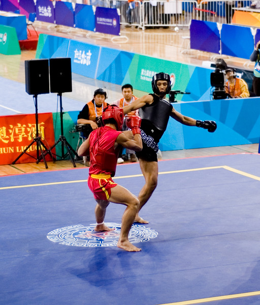 Wushu Championships
