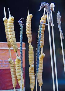 Centipede caterpillar