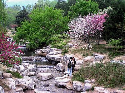 Beijing Botanical Gardens