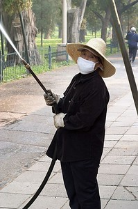 Worker spraying the trees at the Temple of Heaven.