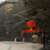 Morning Tai Chi in Beijing