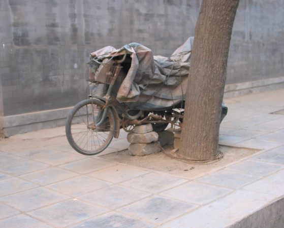 beijing bicycles2.jpg