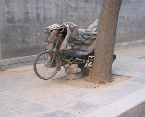 beijing bicycles2.jpg