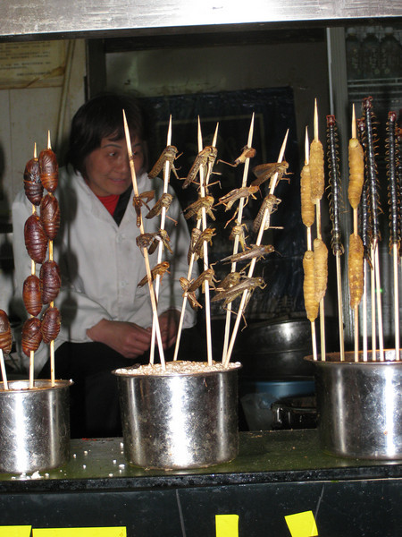 Some sort of slug things, grasshoppers, centipedes on a stick at the night market.