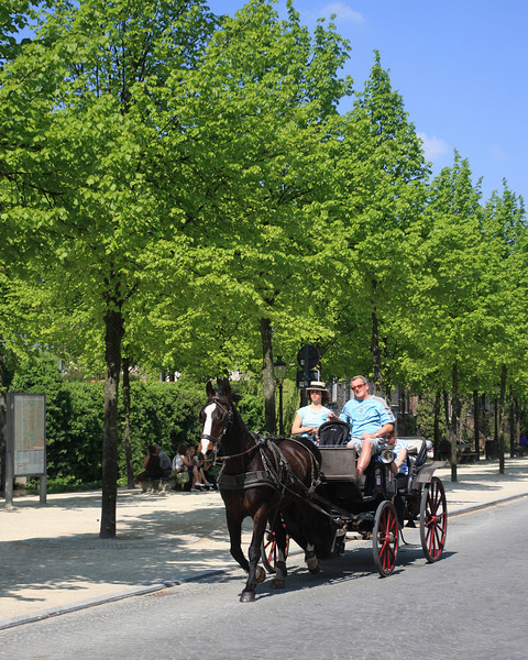 Horsedrawn carriage tour in Bruges.