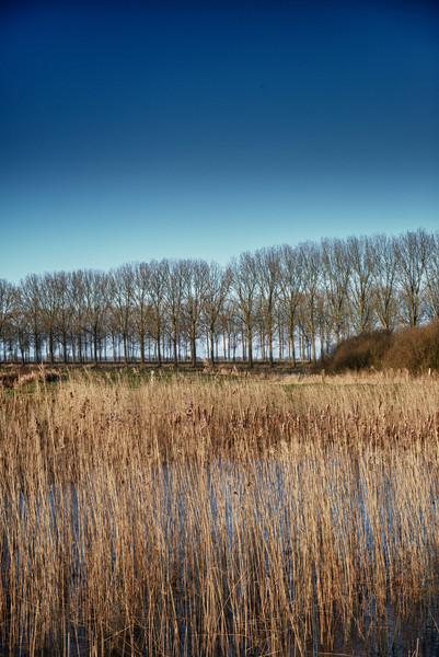 View from one of the several walkways @ Damme - West Flanders - Belgium <br /> <br /> Vista desde uno de las varias caminatas en Damme - Flandes Occidental - Bélgica<br /> <br /> Blick aus einem der vielen Wanderwege in Damme - Westflandern - Belgien<br /> <br /> Vue d'un des différents sentiers de balade à Damme - Flandre Occidentale - Belgique<br /> <br /> Zicht van één van de vele wandelpaden in Damme - West-Vlaanderen - België