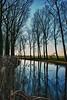 Zuidervaartje canal, reeds and poplars - Damme - West Flanders - Belgium<br /> <br /> Canal Zuidervaartje, álamos y carrizos - Damme - Flandes Occidental - Bélgica<br /> <br /> Zuidervaartje Kanal, Pappeln und Schilf - Damme - Westflandern - Belgien <br /> <br /> Canal Zuidervaartje, peupliers et roseaux - Damme - Flandre Occidentale - Belgique<br /> <br /> Zuidervaartje kanaal, popelieren en riet - Damme - West-Vlaanderen - België