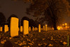 Essex Farm Cemetery @ Ypres