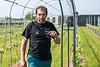 One of the winegrowers is Dirk Degrande from Geluwe - Kruiseke - Wervik - West-Vlaanderen - Belgium<br /> <br /> Uno des los viticultores es Dirk Degrande del pueblo de Geluwe - Kruiseke - Wervik - West-Vlaanderen - Bélgica<br /> <br /> Eén van de wijnbouwers is Dirk Degrande uit Geluwe - Kruiseke - Wervik - West-Vlaanderen - België<br /> <br /> Un des viticulteurs est Dirk Degrande de Geluwe - Kruiseke - Wervik - West-Vlaanderen - Belgique