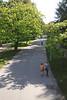 Vondelpark Amsterdam Holland