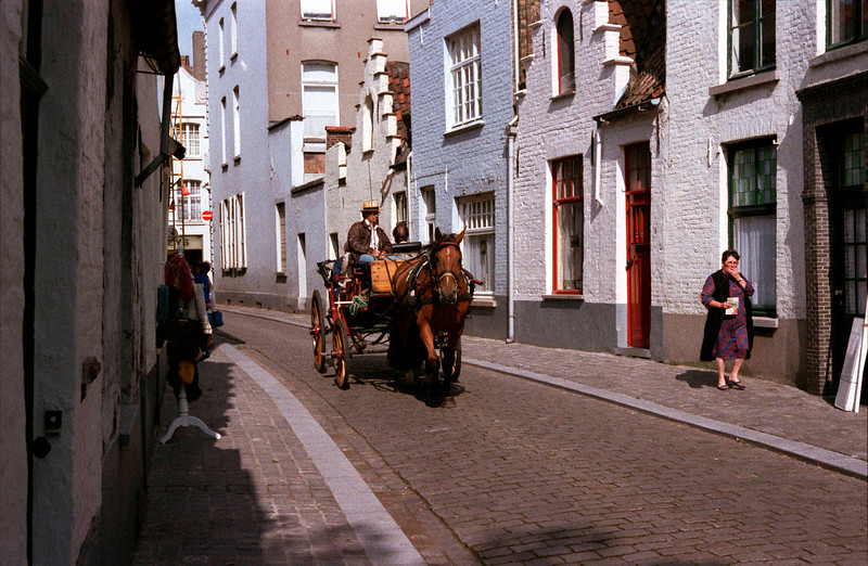 Horse and Carriage Bruges
