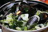 Mussels were in season, and on menus everywhere