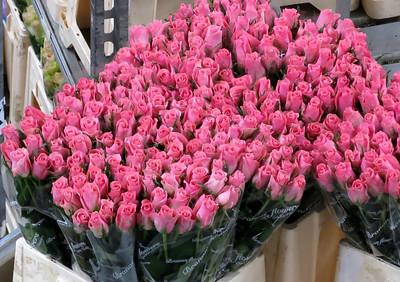 Aalsmeer Flower Auction