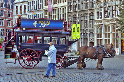Horse and carriage in Grote Markt.