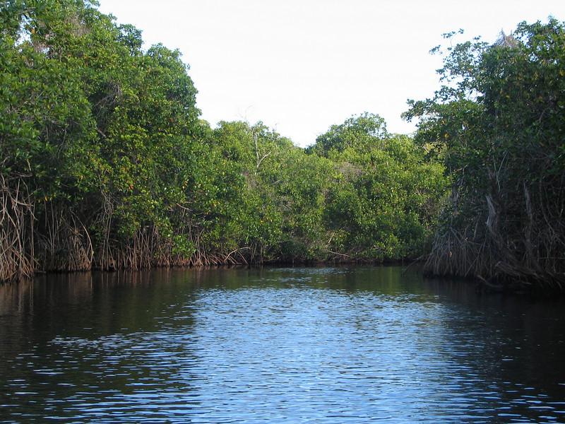 Belize06 - 143