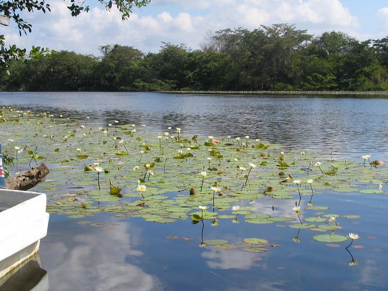 Belize06 - 85