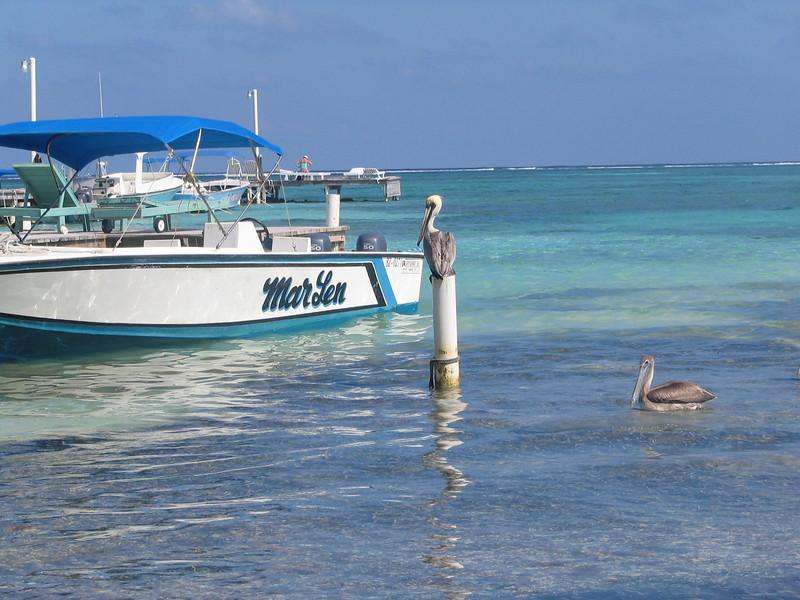 Belize06 - 162