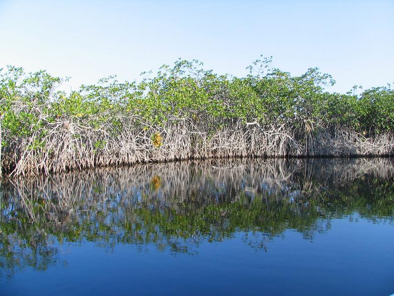 Belize06 - 68