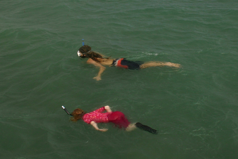C Caulker Snorkeling 02
