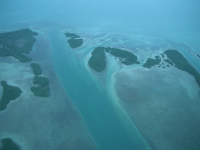 © Joseph Dougherty.  All rights reserved.   Mangroves and tidal channels on the leeward (lagoon side) coast of Ambergris Caye.