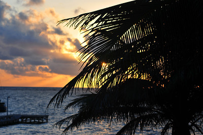 © Joseph Dougherty. All rights reserved.   Ambergris Caye, Belize.