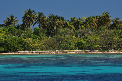 © Joseph Dougherty.  All rights reserved.   Half Moon Caye on the southeastern corner of Lighthouse Atoll. Redfooted boobies nest in the trees along the shore.