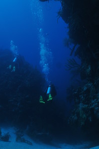 © Joseph Dougherty.  All rights reserved.   Descending through a wide cut to reach the Half Moon Caye wall