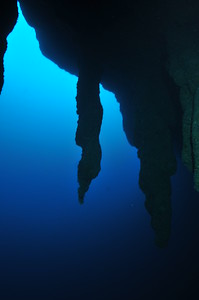 © Joseph Dougherty.  All rights reserved.   Stalactites hang from a cavern roof at 130 feet underwater in the Great Blue Hole, silent reminders of an era when the sea level was much lower than it is today; Lighthouse Atoll, Belize.