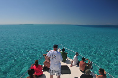 © Joseph Dougherty.  All rights reserved.   Cruising along over the shallows of Lighthouse Reef Atoll