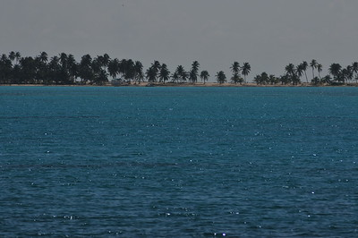 © Joseph Dougherty.  All rights reserved.   Half Moon Caye on the southeastern corner of Lighthouse Atoll.