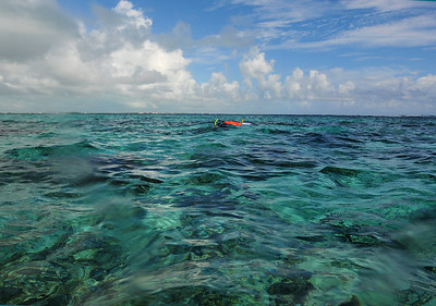 © Joseph Dougherty. All rights reserved.  Snorkelers on the surface.   Hol Chan Marine Reserve, Ambergris Caye, Belize