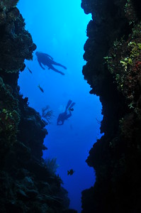 © Joseph Dougherty.  All rights reserved.  Deep canyons on the face of the Belize Barrier Reef.